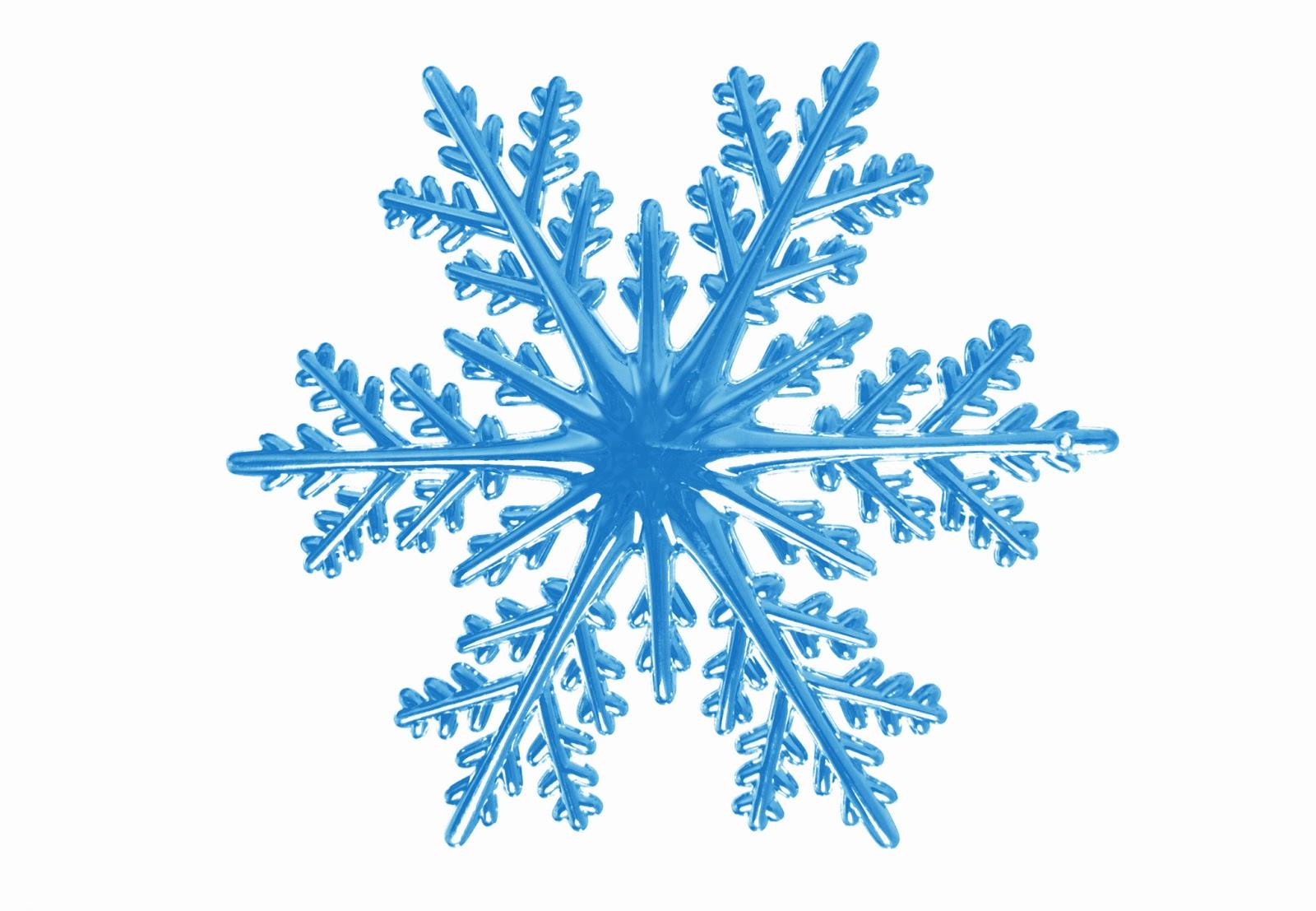 snowflake febbraio